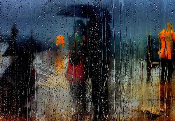 Kišni dan - Page 3 12000242