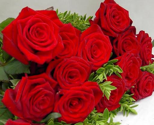 Ruže - Page 2 12122997