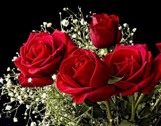 Ruže - Page 2 12459892