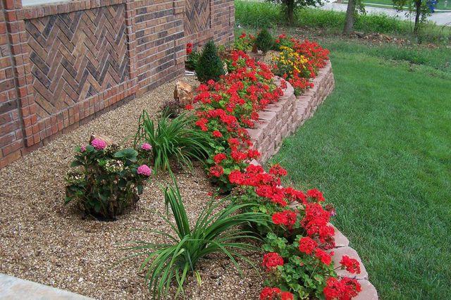 Cvijeće oko kuće  - Page 3 13393567